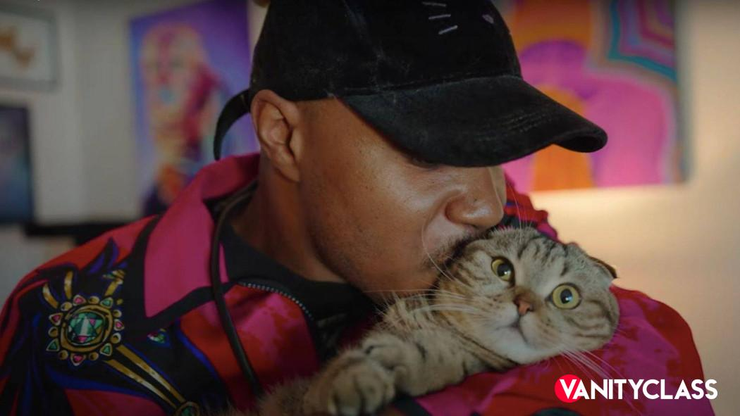 Cat People (TRAILER), nuova docuserie felina prossimamente su Netflix
