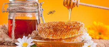 miele liquido in favo